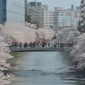 tokyo-meguro